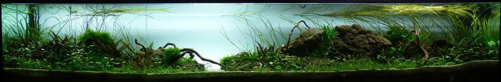 aquarium unter wasser par erikstras. Black Bedroom Furniture Sets. Home Design Ideas