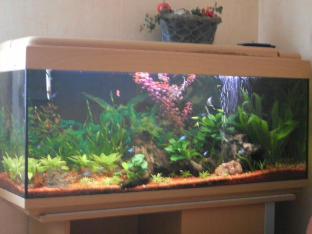 aquarium aquarium 120l par aquaur21. Black Bedroom Furniture Sets. Home Design Ideas
